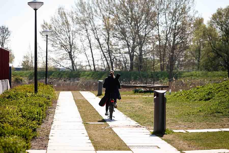 karrespoor amsterdam rieteiland park landschap